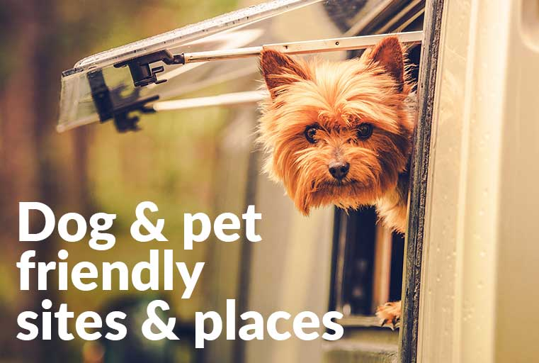 Pet-Friendly-sites